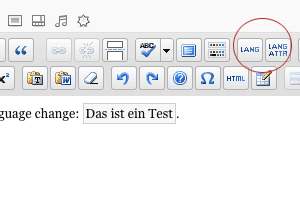 Screenshot: Buttons MCE Accessible Language Change
