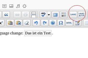 Screenshot: Buttons MCE Accessible Language Change