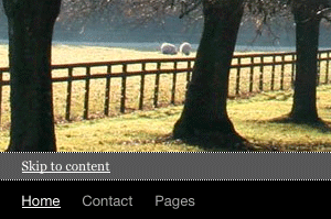Screenshot: Accessible 1.0 - visible skip link to content